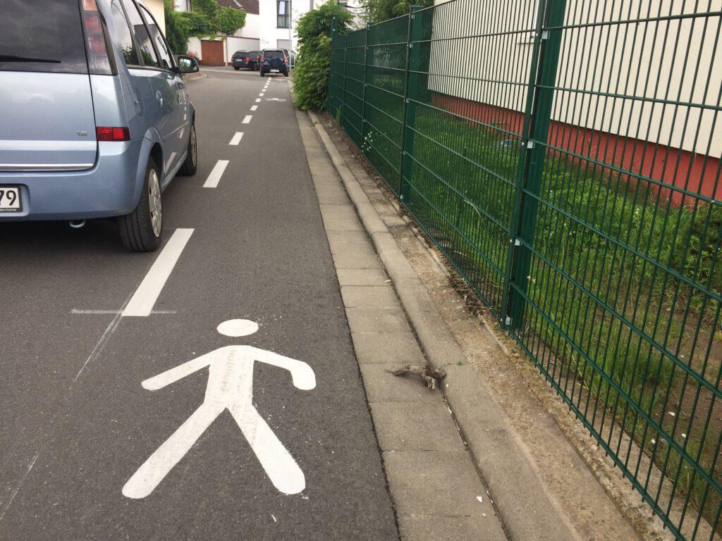 Fußgängerstreifen im Wacholderweg.