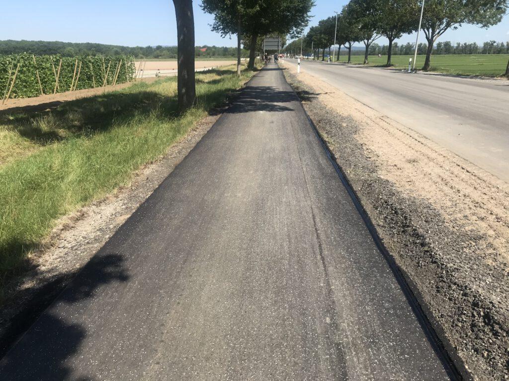 L3110: sanierter Radweg zwischen Lampertheim und Waldfriedhof.